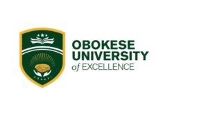 Obokese University of Excellence launched as part of 'Year of Return' legacy
